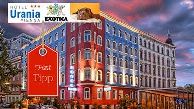 Die Haustiermesse Wien ist eine Messe für Haustiere und Haustierbedarf. Hotel mit Hund Empfehlung willkommen