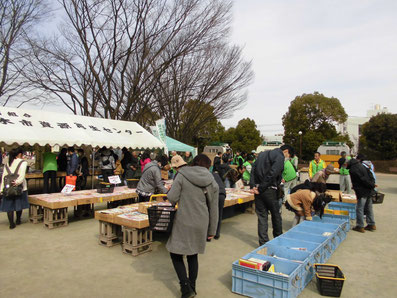 フリーマーケット古本市