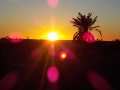 voyage voix dans le désert marocain