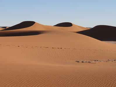 Vacances et voyage Qi Gong désert Maroc