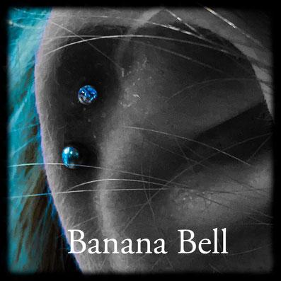 Labret bleu Piercing Middle Hélix