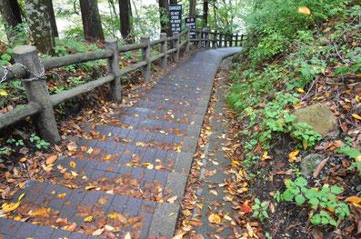吹割の滝遊歩道