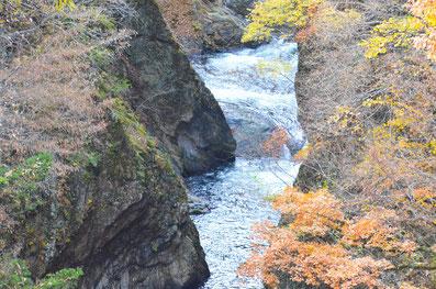 吹割の滝落ち葉のシャワー