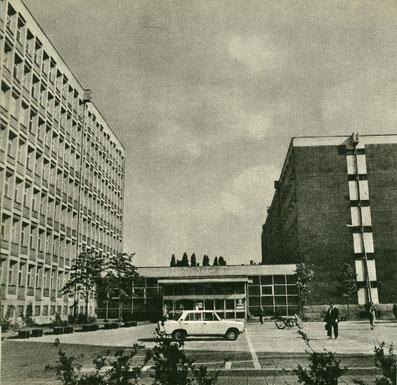 Collegium Novum, Poznań