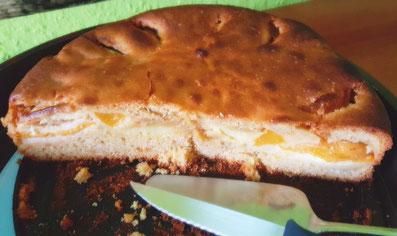 2. Variation des Apfelkuchen-Rezeptes von K.D. Michaelis: Selbstgebackener Pfirsich-Apfel-Vanillepudding-Kuchen