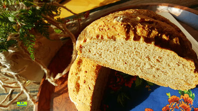 Angeschnittenes Dinkel-Bauernbrot mit Blick auf Kruste und Krumme nach einem Rezept aus dem kombinierten Koch- und Backbuch Dinkel-Dreams von K.D. Michaelis