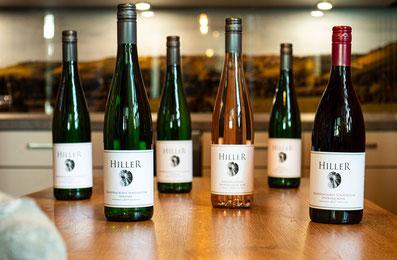 Weinprobe mit 6 Weinen