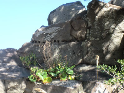 屏風岩・矢穴石