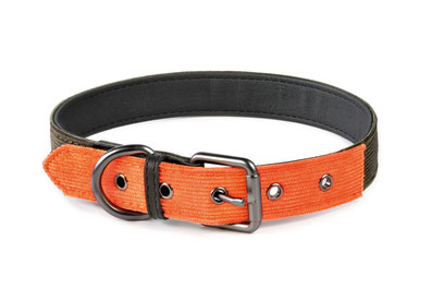 Hundehalsband Milano Orange Khaki schick Cord Leder