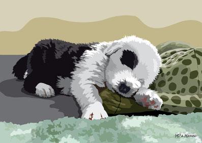disegno-drawing-bobtail-cane-dog-digital-art-cucciolo-puppy-dorme-peluche-tartaruga