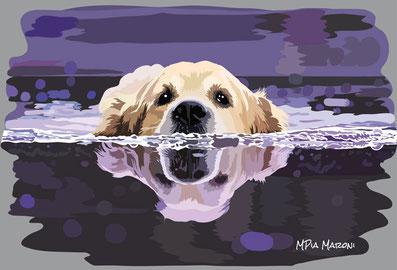disegno-drawing-portrait-cane-dog-digital-art-Golden-Retriver-swimming-bagno-acqua-nuota
