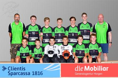 Junioren B (Junioren U16 Saison 17/18)