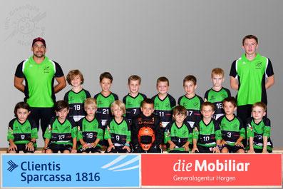 Junioren D (Junioren D2 Saison 17/18)