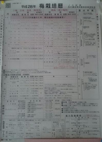 JA紀南  梅防除歴【H28】