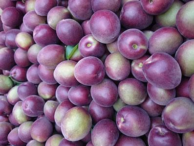 ミスなでしこⓇ 収穫果実