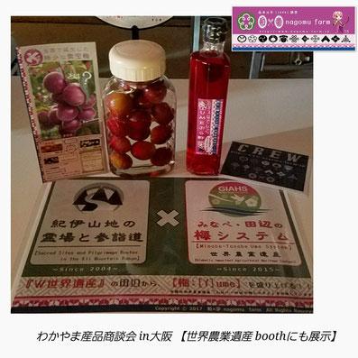 わかやま産品商談会in大阪 世界農業遺産 特設ブース展示 和×夢 nagomu farm