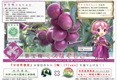 紫宝梅『ミスなでしこⓇ』 プレミア和歌山 2017認定 和×夢 nagomu farm