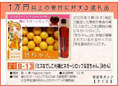 田辺市 ふるさと納税 『ミスなでしこⓇ』梅ビネガーシロップ&甘ちゃん。【みかん】 和×夢 nagomu farm
