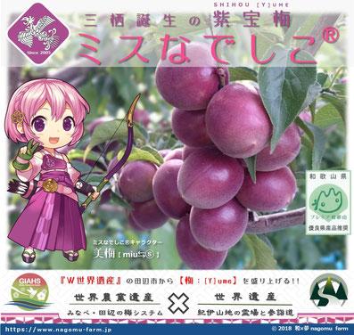 紫宝梅™『ミスなでしこⓇ』大看板デザイン 和×夢 nagomu farm