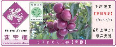商い【紫宝梅™ ミスなでしこⓇ】 和×夢 nagomu farm
