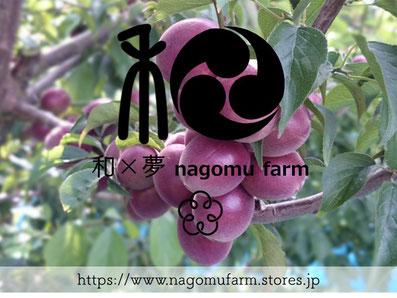 和×夢 nagomu farm ショップサイト stores.jp
