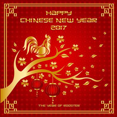 Glückskekse zum chinesischen Neujahr