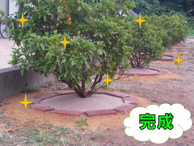 土の捨て方 草の捨て方 環境 ヒートアイランド 自然素材