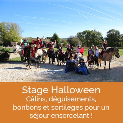 Equitation à poney et cheval, stage Halloween aux Grilles