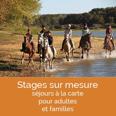 stages d'équitation pour familles, adules et enfants