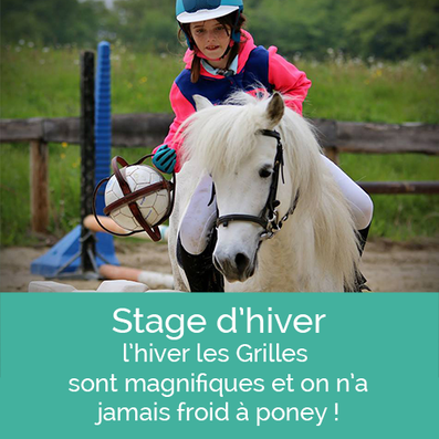 Equitation à poney et cheval, stage d'hiver aux Grilles