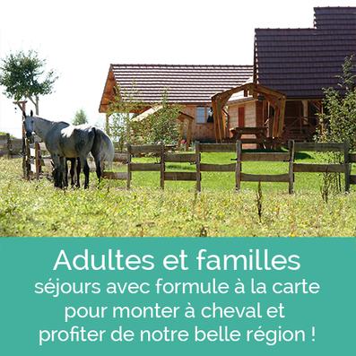 Stage d'équitation, séjours pour adultes et familles