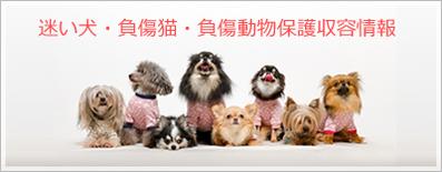 迷い犬・負傷猫・負傷動物の保護収容情報