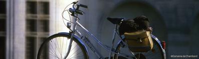 L'école Buissonnière gîtes pour famille et -groupes à Cheverny - tourisme châteaux, balades à dos d'âne, vacances en famille, amis - Val de Loire, Loir-et-Cher - Les itinéraires à vélo ©CRT Centre Val de Loire
