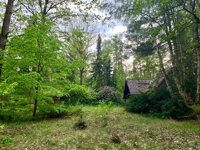 Waldhaus Gartenseite