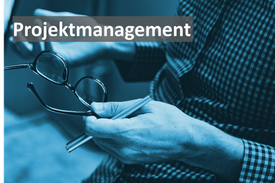 Projektmanagement, Projektleiter, Telekommunikation