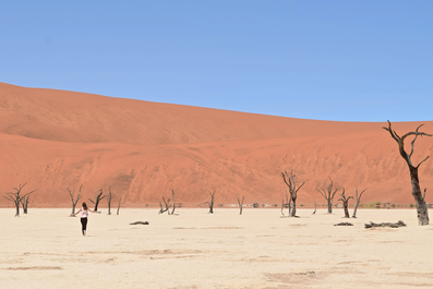 2 Weeks in Namibia - Your Ultimate Itinerary - Sossulvei