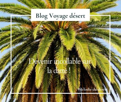 Blog voyage désert