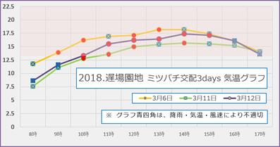 2018遅場 梅園地 満開期交配3days