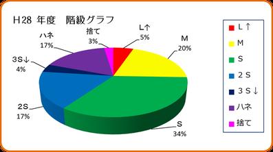 H28年度早生みかん階級グラフ 和×夢 nagomu farm
