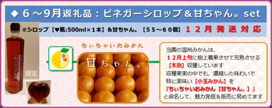紫宝梅『ミスなでしこⓇ』12月発送品 ふるさと納税返礼品【2017】 和×夢 nagomu farm