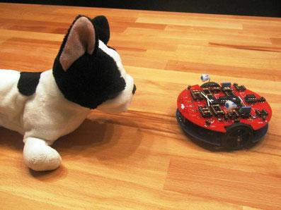 Roboter tibo hält Abstand zum Hund