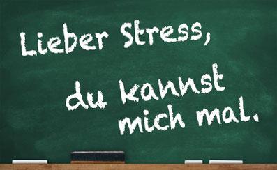 Stressmanagement-Seminar: Lieber Stress, du kannst mich mal. Begegnung & Gespräch