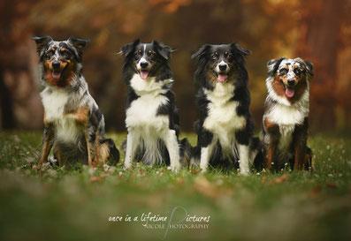 vl.: Blue, Amy, Aylin, Ciwana