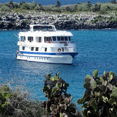 Corona Pandemie Reisen Galapagos Inseln