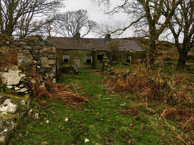 PERFECT SCENARIO – a farmhouse in rural Ireland abandoned about 15 years ago.