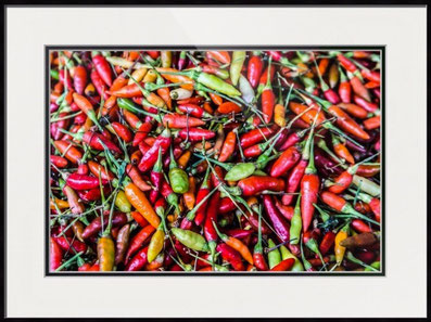 Hot Chili in canvas or fine art print, metal print