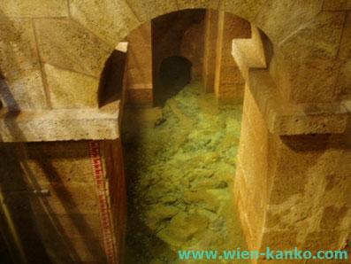 アルプスの一角のウィーン上水道の水源
