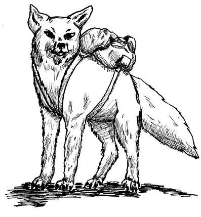 Roter, redegewandter Fuchs, mit Rucksack auf dem Rücken. Was für ein Gepäck benötigt ein Reisender Barde wie ein Fuchs wohl?