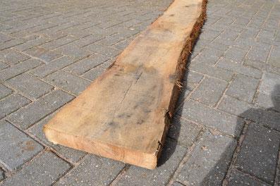 Boomstam planken houthandel woodz