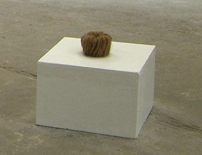 Objekte Kunst Berlin Lucia Fischer Haare